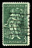 Garden Clubs Us Postage Stamp