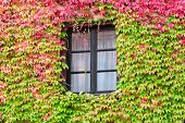 Window In An Old Traditional European Country House
