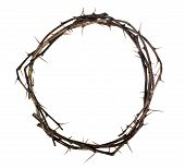 Crown Of Wood With Thorns