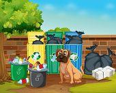 Illustration of rubbish and dog