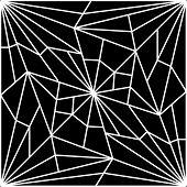Cracked Spider Web