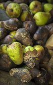 Rotten Pears