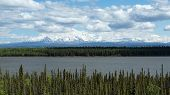 image of willow  - The Wrangell mountains rise above Alaska - JPG