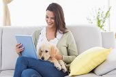 picture of sofa  - Happy beautiful woman with dog using digital tablet on sofa at home - JPG