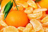 image of mandarin orange  - fresh mandarine orange among mandarine slices closeup - JPG