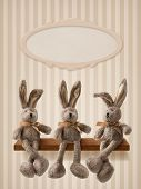 picture of hare  - Three hares sitting on the shelf - JPG