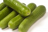 Persian Mini Cucumbers