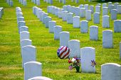 foto of arlington cemetery  - Arlington National Cemetery Virginia VA near Washington DC United States - JPG