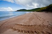 picture of darwin  - Beautiful landscape of a beach in the Galapagos Islands - JPG