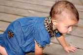 Baby Girl Crawling