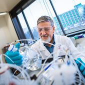 stock photo of chromatography  - Senior male researcher carrying out scientific research in a lab  - JPG