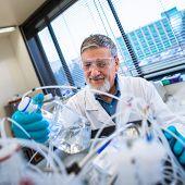 picture of scientific research  - Senior male researcher carrying out scientific research in a lab  - JPG