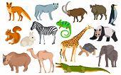 Постер, плакат: Big set different animals goat wild boar panda rabbit zebra