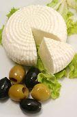 Постер, плакат: белый козий сыр и оливки на белый блюдо