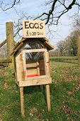 Honesty Egg Box