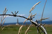Barbed wire detail at Pointe-du-Hoc memorial, Normandy, France, where the Rangers climbed the cliffs