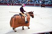 MADRID, SPAIN - OCTOBER 17: The horseback picador continues to stab the bull's neck leading to the a