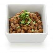 fermented soy beans , natto , japanese food