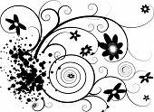 Floral Splat