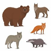 Wild Animals Vector Icons. Bear And Lynx, Fox And Badger, Wolf. Bobcat Or Wildcat And Brown Bear, Pr poster