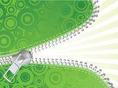 Green detailed zipper. Vector illustration