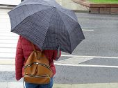 Rainy Day In The City. Woman With Umbrella Near The Pedestrian Crossing. Rainy Weather Concept poster