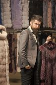 Man With Beard And Mustache Hold Fur Coat. Guy At Furry Coat In Shop With Fur On Background. Luxury  poster