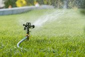 Garden Irrigation System Watering Lawn. Watering The Lawn In The Hot Summer. Lawn Sprinkler Spaying  poster