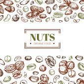 Background With Nuts. Cashew And Walnut, Pistachio And Hazelnut Organic Food Vector Poster Template. poster