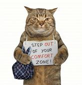 There Is A Cat With A Sign Around His Neck. It Says  Step Out Of Your Comfort Zone ! . poster