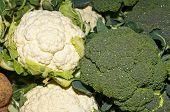 Caulifllower und broccoli