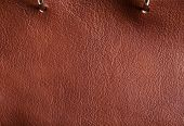Baha Brandy Color Of Leather