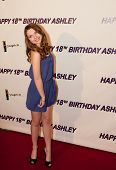 Ashley Argota 18th Birthday