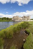 picture of rabies  - Raby Castle in County Durham near the village of Staindrop - JPG