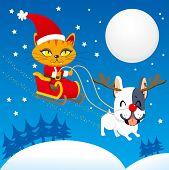 Santa Cat Sleigh
