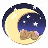 pic of drow  - baby bear girl sleeping on the moon - JPG