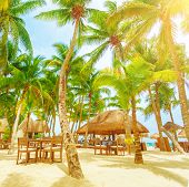 stock photo of playa del carmen  - Romantic restaurant on the tropical beach - JPG