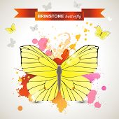 Brimstone butterfly over bright background