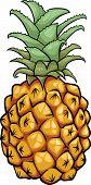 Pineapple Fruit Cartoon Illustration