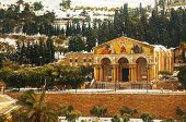 foto of gethsemane  - Church of All Nations in Jerusalem Israel - JPG