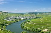 Leiwen,Mosel River,Mosel Valley,Germany
