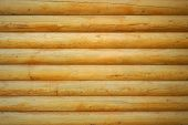 stock photo of row trees  - Close up shot of parallel wooden logs background - JPG