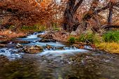 picture of guadalupe  - Beautiful Fall Foliage Surrounding the Silky Waters Flowing Down the Guadalupe River in Texas.