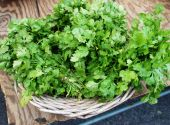 Parsley.