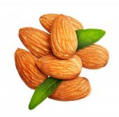 Almonds nuts with leaves isolated on white background.