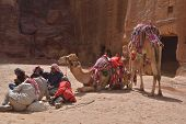 PETRA, JORDAN - MARCH 16, 2014: Bedouins with their camels near Al Khazneh, the Treasury of Petra. Since 1985, Petra is listed as UNESCO World Heritage site
