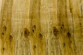 Abstract Wooden Texture Background With Multiple Grains And Snags.