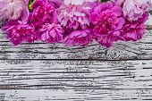 Peony flowers on ustic background