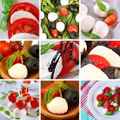 Collage of cheese mozzarella with vegetables
