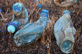 Three Melted Plastic Bottles On The Burnt Grass